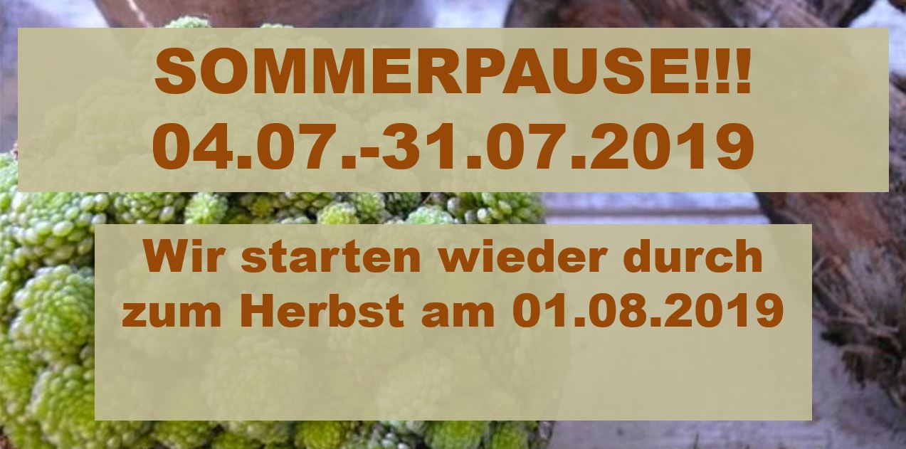 Sommerpause 2019